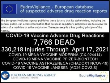 EudraVigilance 4 24